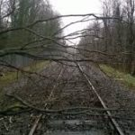 Bomen op de spoorrails